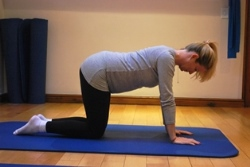 Pregnant woman doing abdominal exercise on hands and knees - starting position