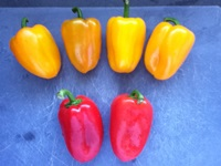 Mixed peppers web